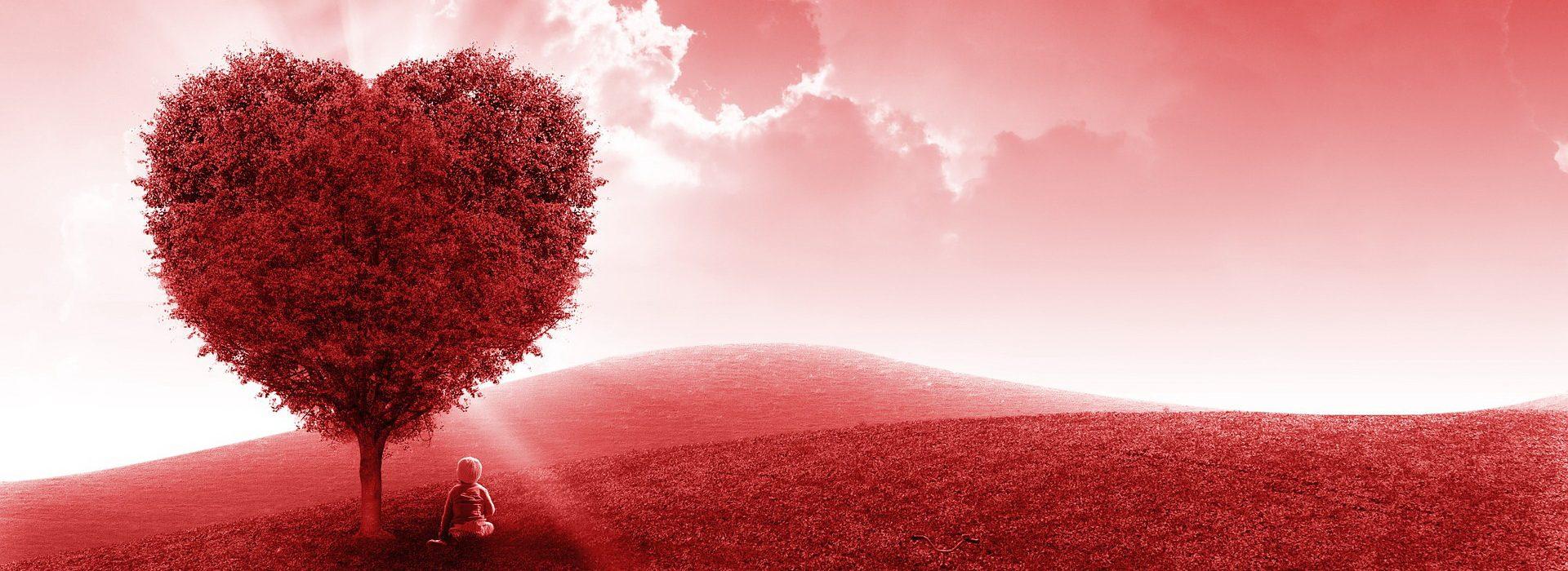 heart, red, field