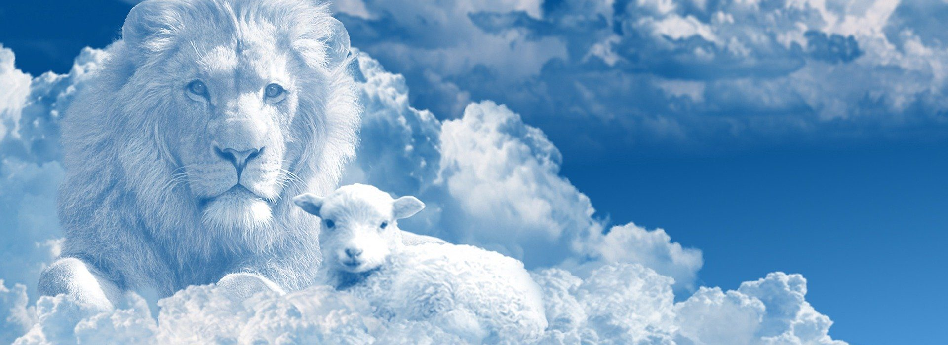 And the cow and the bear shall feed; their young ones shall lie down together: and the lion shall eat straw like the ox.